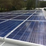 185 kWp solar system saves flower farm over $ 40,000 per year